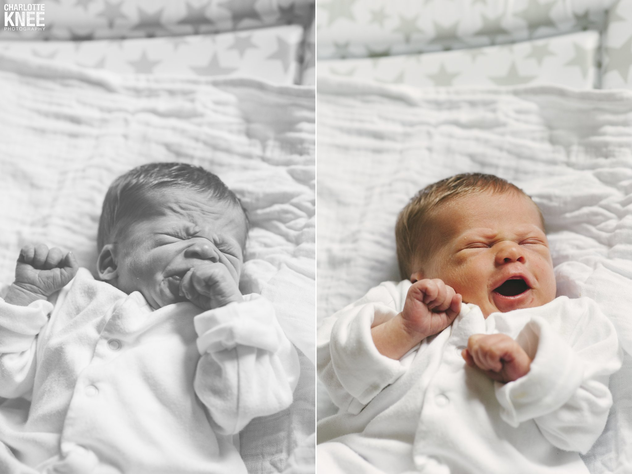 Newborn Photography Copyright Charlotte Knee Photography_0013.jpg